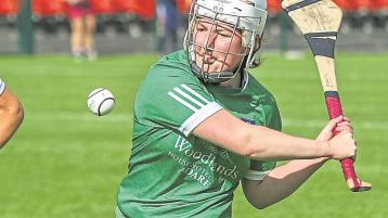 Limerick secure senior camogie status with thrilling championship win over Offaly