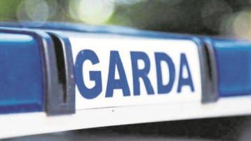 Significant damage caused to plant machinery at site of Limerick road project
