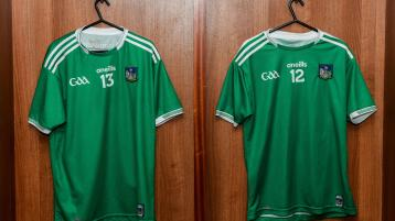 Limerick Senior hurling team named for Allianz league with Westmeath