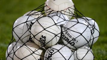 Limerick Ladies Gaelic football minor panel is revealed