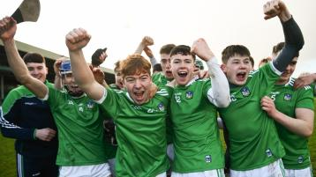 Limerick trio selected on 2020 All-Ireland minor hurling Team of the Year