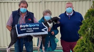 Buck books Irish Greyhound Derby Trial Stake ticket with Limerick win