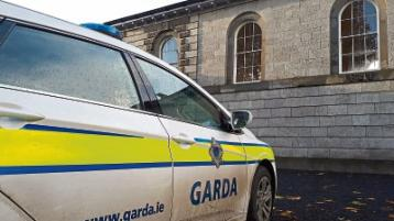 County Limerick parents fined €1,500 as sonmisses school