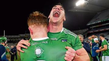 Opinion: 'The perfect hurling season' - Shane Dowling