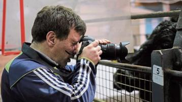 Footage from Limerick mart to feature on RTE's Angelus