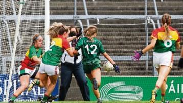 'We are in bonus territory' insists Limerick Ladies football manager Donal Ryan