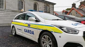 Gardai called to a 'fictional fight' in Limerick pub