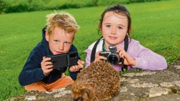 Lovely Limerick - The Great Outdoors: Go wild with new TLC photo competition