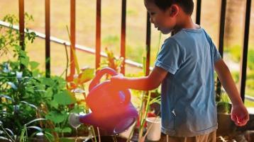 Green Fingers: Getting little green fingers gardening