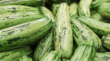 Healthy Living: Eat in season: Try courgettes and marrows