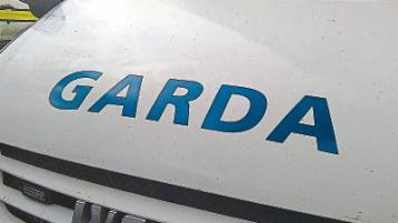 Dog sustains 'serious injuries' during attack in Limerick village