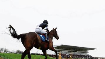 New date confirmed for Limerick Racecourse meeting