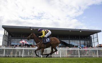 Horse Racing Ireland News: Limerick's Billy Lee notches 55th win