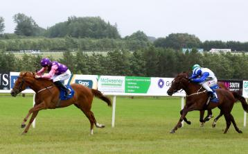 Limerick jockey Billy Lee lands feature race at Naas