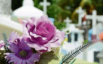 Deaths in Limerick - January 15, 2019