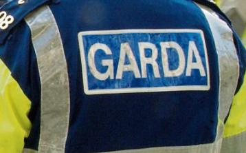 Gardai appeal for volunteers in the search of missing elderly woman