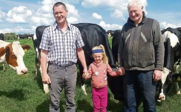 Friesian breeders holdfield evening in County Limerickthis Friday night