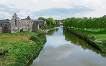 Councillors keen to draw up five year plan for towns and villages in county Limerick district