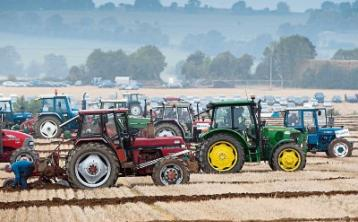 WATCH: All you need you know if you're travelling from Limerick to the National Ploughing Championships