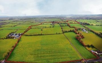 New to the market: Limerick farm that is 'the real deal' is guided at €650k