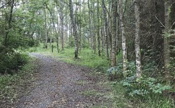 Take time to explore Limerick county once the 5km rule is removed