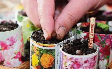 Gardening with Jo: Find your sanctuary – mine's my garden