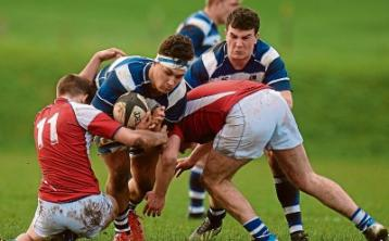 Crescent into Schools Senior Cup semis but Ardscoil bow out
