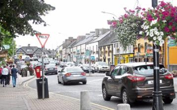 Councillor calls for an end to 'anti-Adare bias' from authority