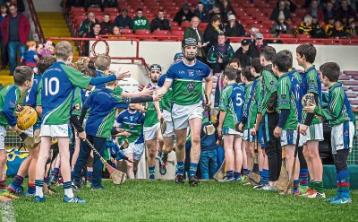 Tobin brothers inspire Murroe-Boher to Limerick Premier IHC title in replay