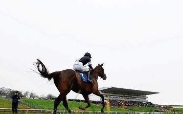 Punters go free at Limerick Racecourse tomorrow