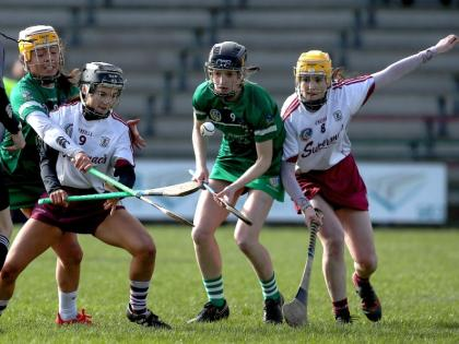 Offaly and Kerry hurlers prepare for make or break clash