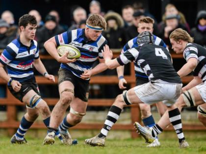 munster schools senior cup betting on sports