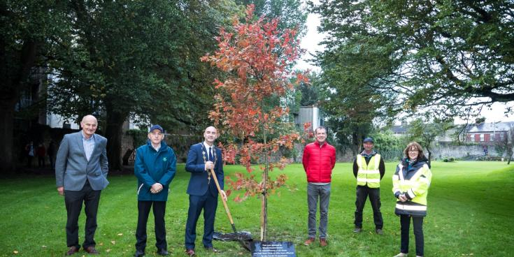 Special tree planted in Limerick to remember those lost to Covid-19