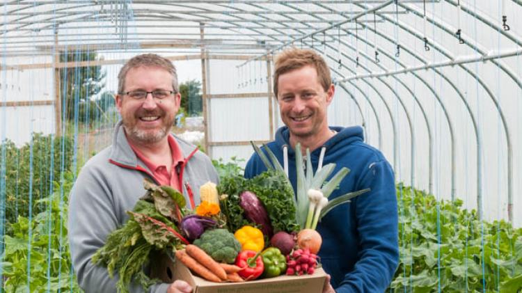 Limerick's Green Earth Organics celebrate new routes with customer special offer