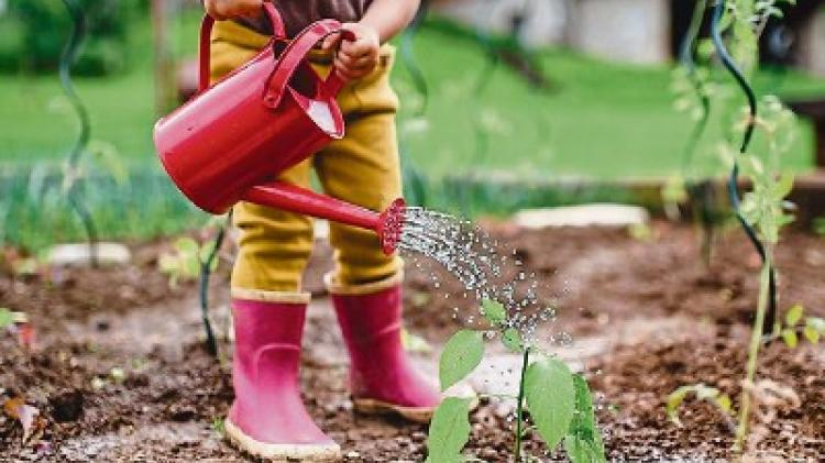Green Fingers: Getting kids involved in the garden