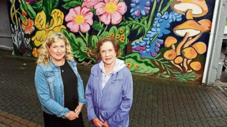 Young Limerick artists turn bright idea into mural