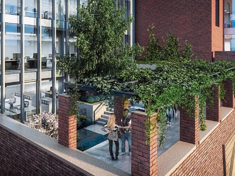 jcgardendesign: Garden Design Limerick