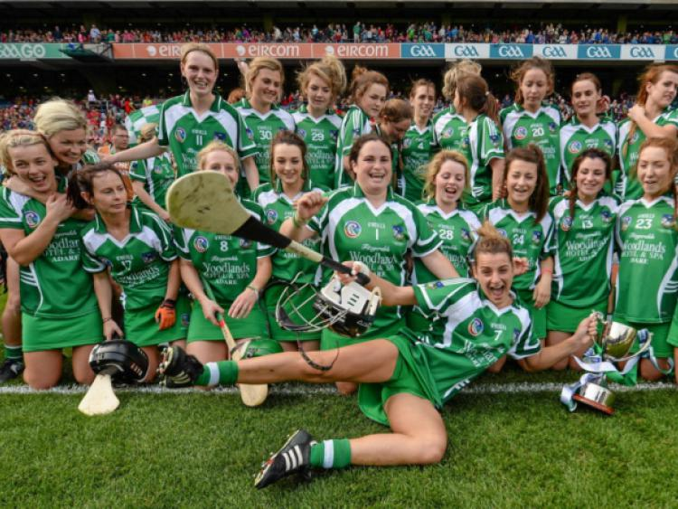 65717944e92dd Claire Mulcahy, Limerick, divebombs the celebrations with her team-mates  after the All