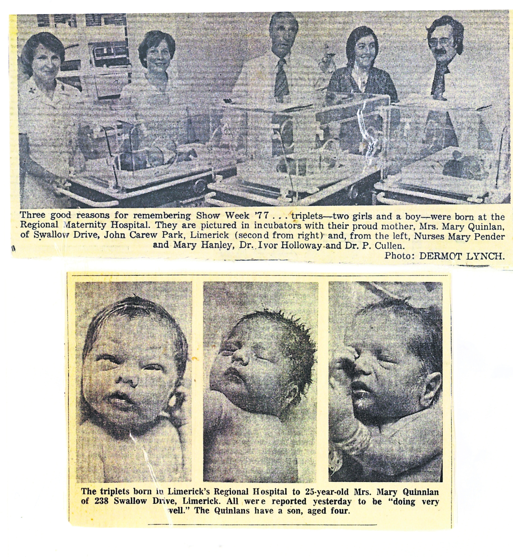 Limerick Triplets Documented In Print Since 1977 Celebrate